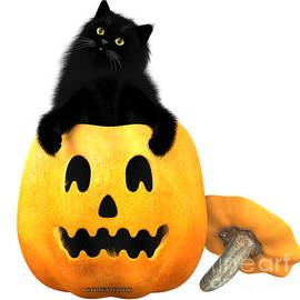 Corey Ford - Black Cat and Halloween