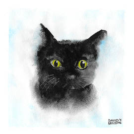 Black Cat - Joy - David Breeding
