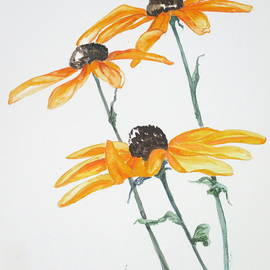 April McCarthy-Braca - Black-Eyed Susans