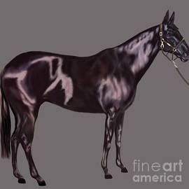 Karen Harding - Black Horse Standing