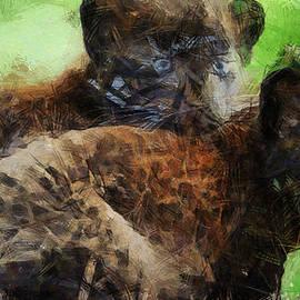 Sir Josef  Putsche - Black Panther Babies