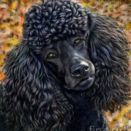 Blackwater Studio - Black Poodle