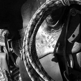 Delynn Addams - Black Saddle