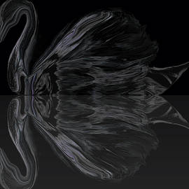 Abstract Angel Artist Stephen K - Black Swan under Moonlight.