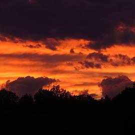 Bill Tomsa - Blazing Maine Sunset