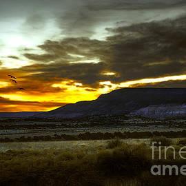 Susan Warren - Blazing Sunset at Ghost Ranch