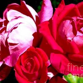 Mioara Andritoiu - Blooming Love