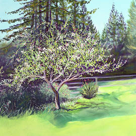 Asha Carolyn Young - Blooming Spring Apple Tree and Green Meadow