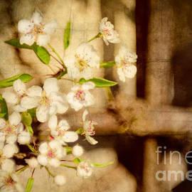 Maria Bobrova - Blossoming pears grange texture 1