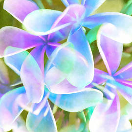 Stacey Chiew - Blue Abstract Floral