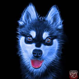 Blue Alaskan Klee Kai - 6029 -BB