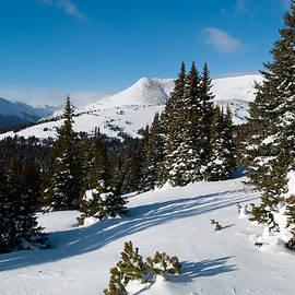 Cascade Colors - Blue and White Colorado Winter Beauty