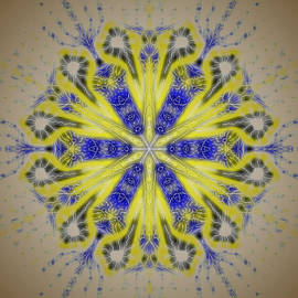 Michael African Visions - Blue and Yellow Shadow Mandala