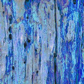 Stephanie Grant - Blue Bark Oil