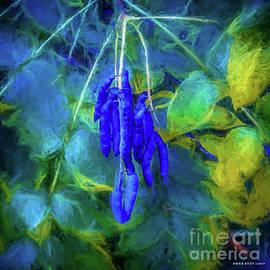 Mona Stut - Blue Beans