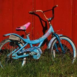 Kathryn Meyer - Blue Bike