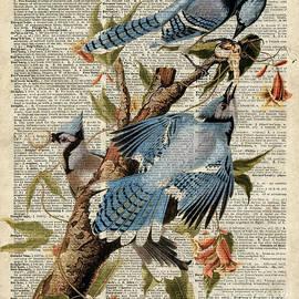 Jacob Kuch - Blue Birds