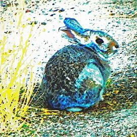 Lenore Senior - Blue Bunny