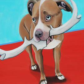 Lauren Hammack - Blue Eyed Pitbull Loves Antlers