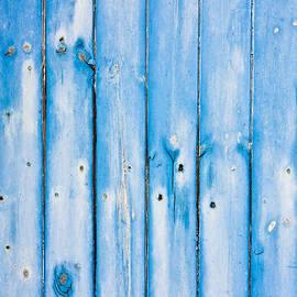 Blue fence panels - Tom Gowanlock