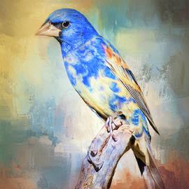 Barbara Manis - Blue Grosbeak