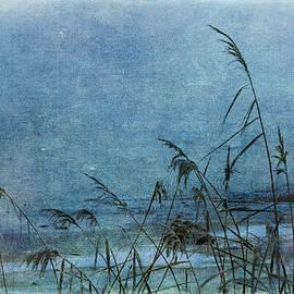Randi Grace Nilsberg - Blue Hour