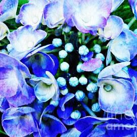 Sarah Loft - Blue Hydrangea 5