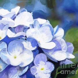 Aline Halle-Gilbert - Star Flowers