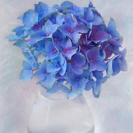 Lisa Mullins - Blue Hydrangea