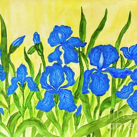 Irina  Afonskaya - Blue irises