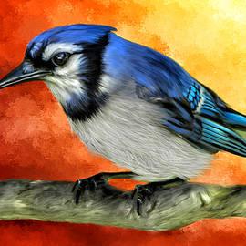 Johanne Dauphinais - Blue Jay