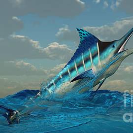 Corey Ford - Blue Marlin Burst