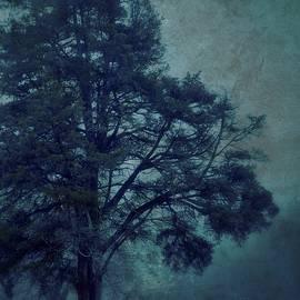 A R Williams - Blue Night