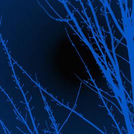 Sheela Ajith - Blue Night