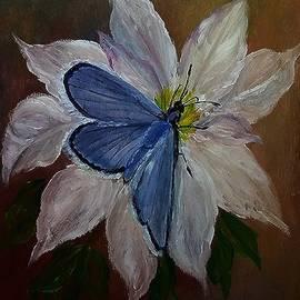 Sandra Maddox - Blue on White