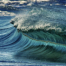 blue pearl  - Stelios Kleanthous