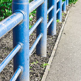Blue railings - Tom Gowanlock