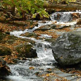 Arlane Crump - Blue Ridge Stream - Skyline Drive