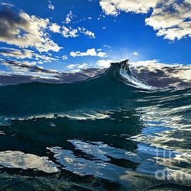 Blue Rogue. - Sean Davey