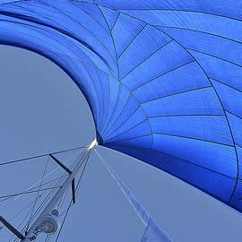 Andrei SKY - Blue sail