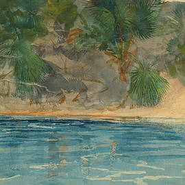 Blue Spring Florida - Winslow Homer