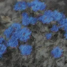 The Art Of Marilyn Ridoutt-Greene - Blue Summer Roses