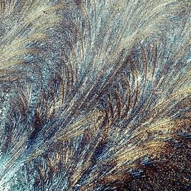 Kim Bemis - Blue Supernova - Hoarfrost
