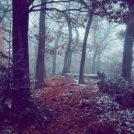 Jenny Rainbow - Blue Woods.  Enchanted