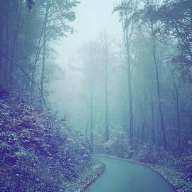 Jenny Rainbow - Blue Woods. Misty Way