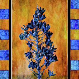Barbara Chichester - Blue Yucca