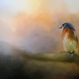Jai Johnson - Bluebird In The Perfect Light