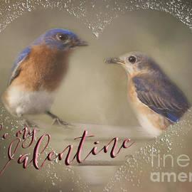 Pam  Holdsworth - Bluebird Love