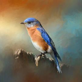 Jai Johnson - Bluebird On The Fence