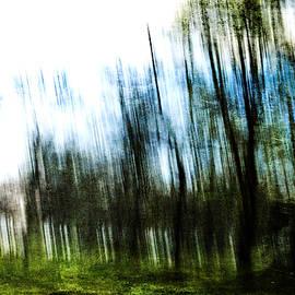 Randi Grace Nilsberg - Blurred Vision